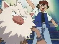 El Pokémon golpeador